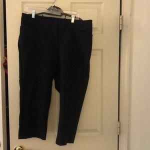 Lane Bryant Businesses Capri Pants